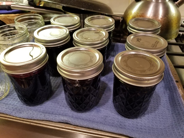 end of jamming night: 9 full jam jars
