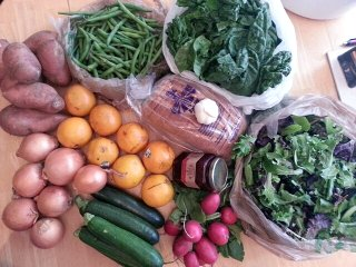 spring CSA, week 8