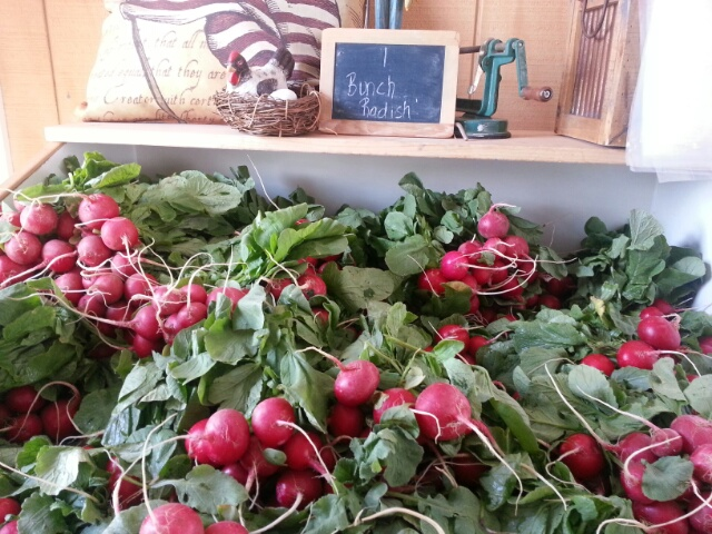 radishes on display