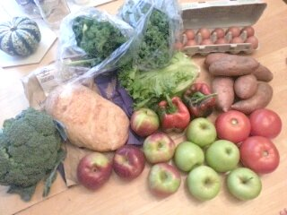 summer/fall CSA, week 17
