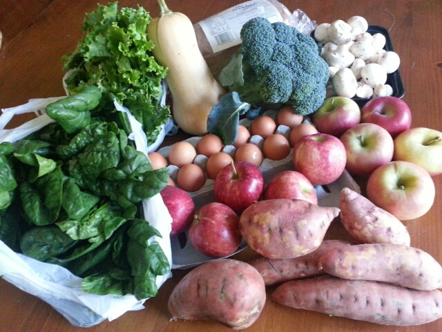 summer/fall CSA, week 19