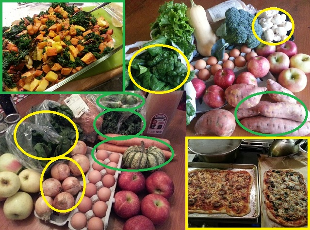 what happens to CSA veggies