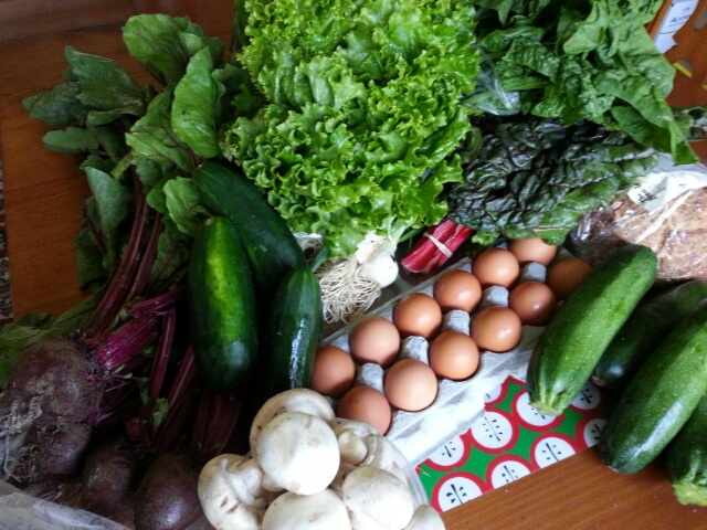 summer/fall CSA, 2015 week 1